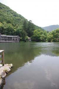 金鱗湖 2