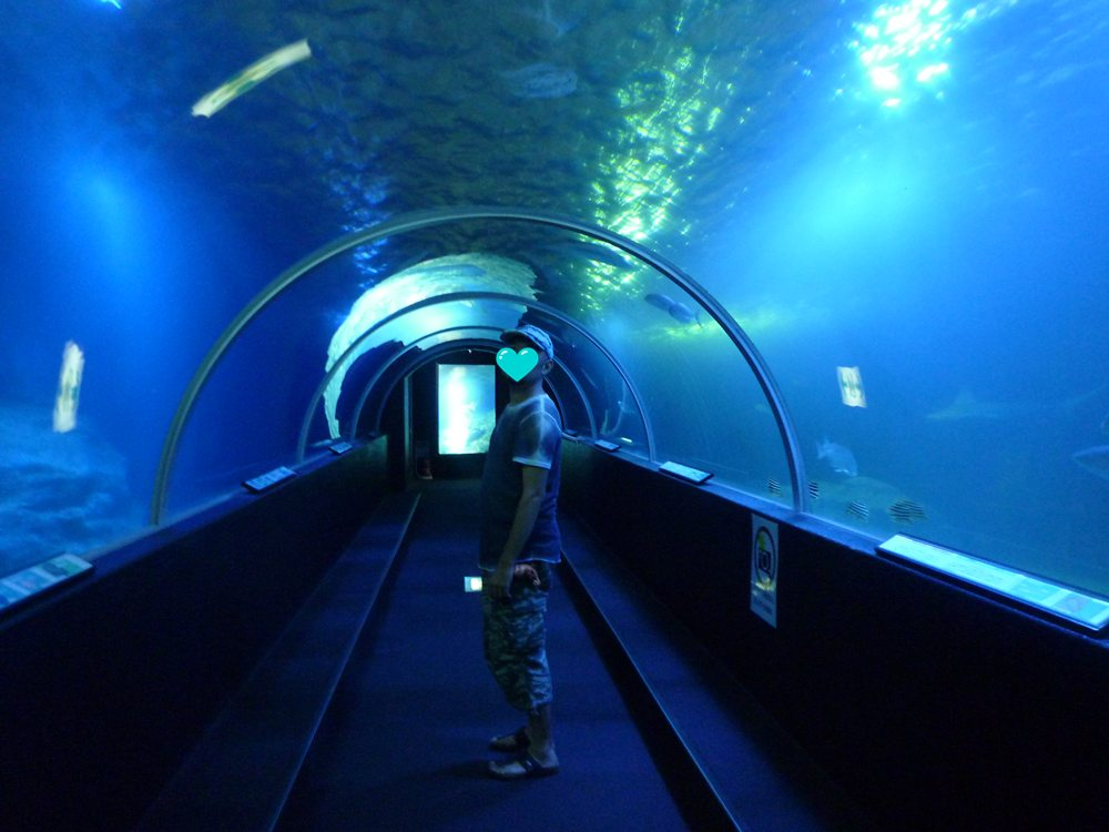 青いトンネル♪