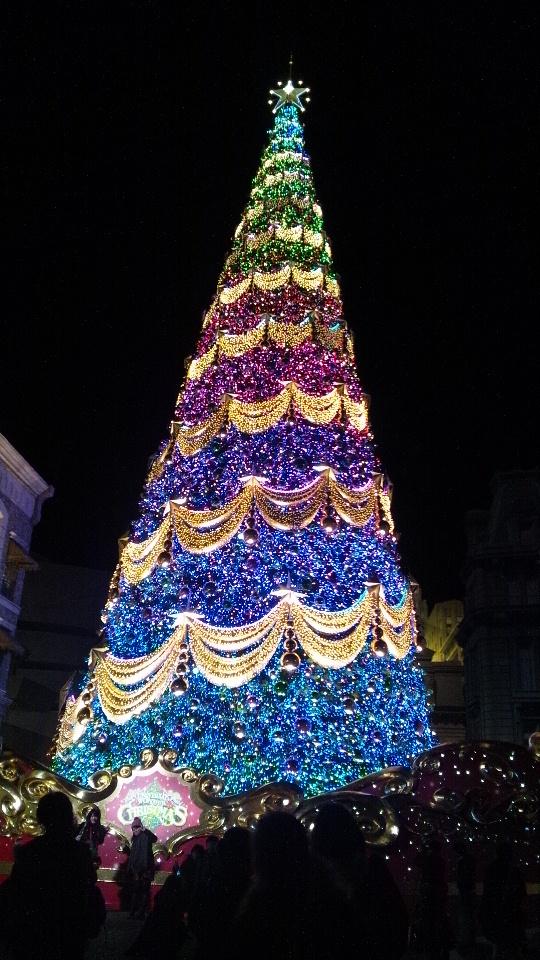 きれいなツリー!
