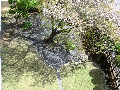okinawa 719-1