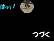 コピー ~ C28FEB13 036s