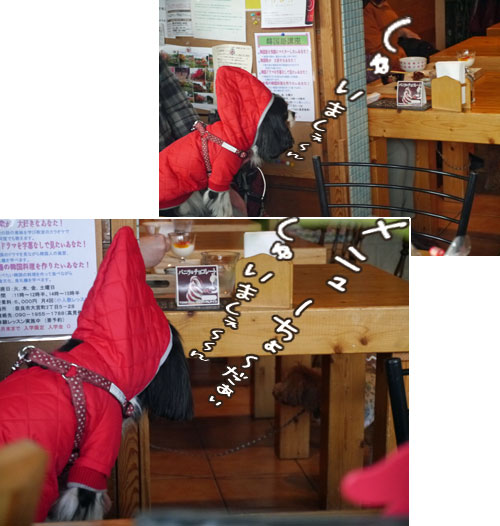 0113c_20130120215627.jpg