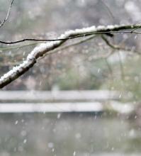 雪(トリミング) a0001_005601★小221