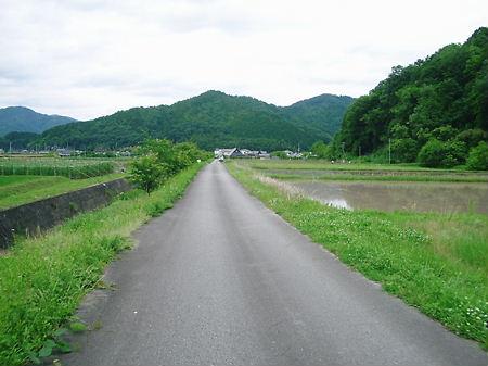 24-6-11 篠山四十八滝~曽根林道 014
