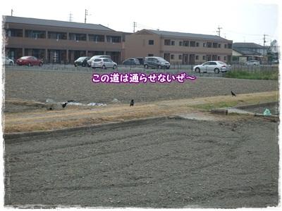 DSCF5793.jpg