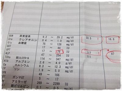 DSCF5846.jpg