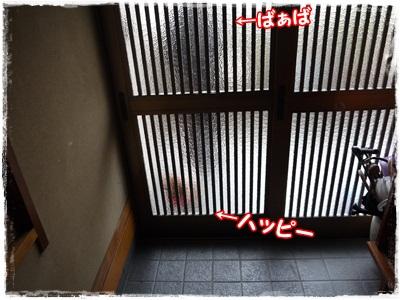 P1180894.jpg
