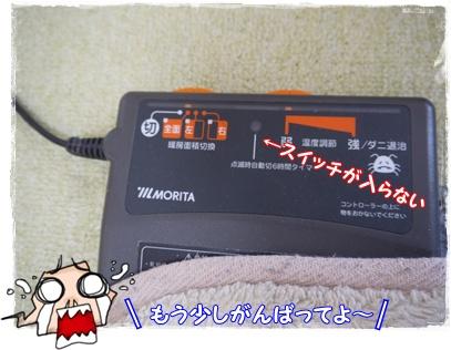 P1200935.jpg