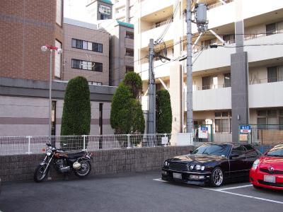 P2112584.jpg