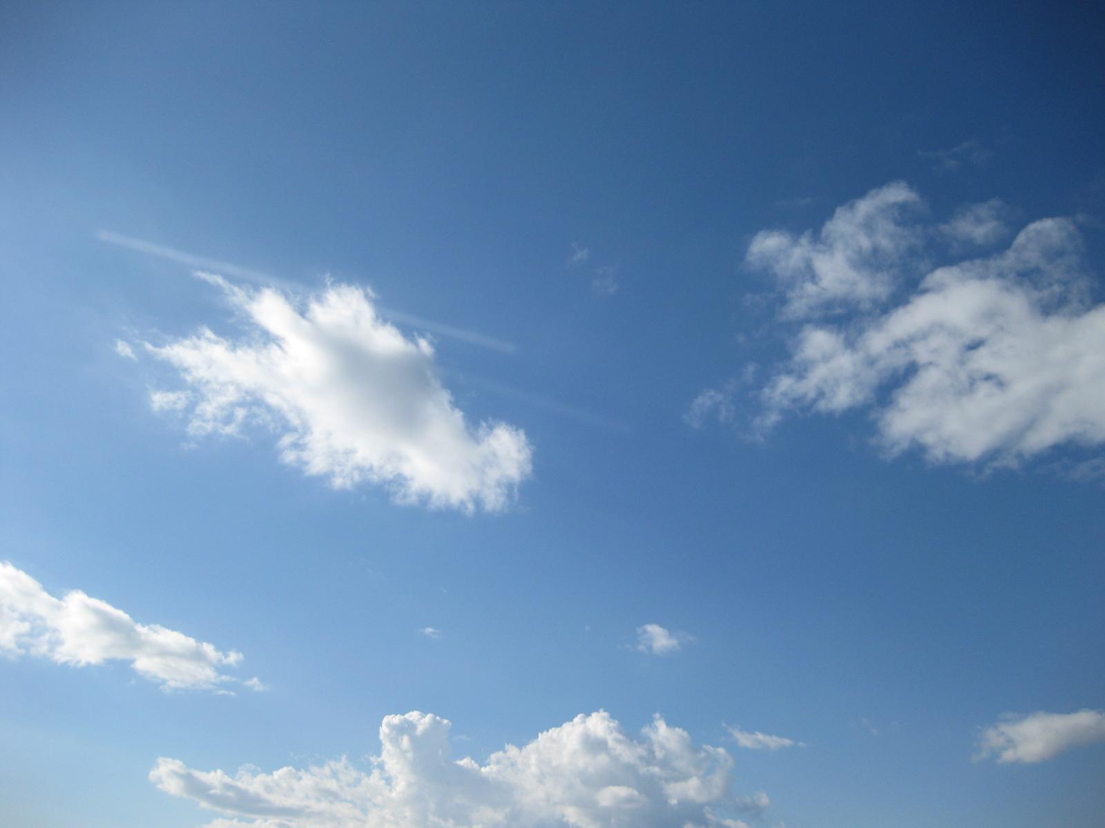 前立腺 膀胱付近の不快感 鈍痛 抜け毛 原因 鍼灸治療 鍼灸(はりきゅう)治療院 東京都葛飾区東新小岩 新小岩