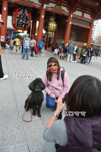 DSC_9318_convert_20141127003855.jpg