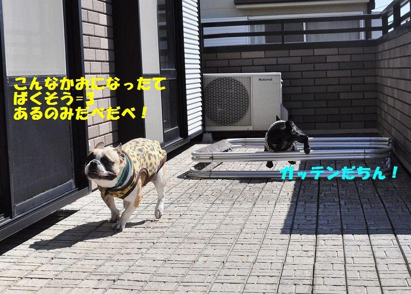001_20130408150115.jpg