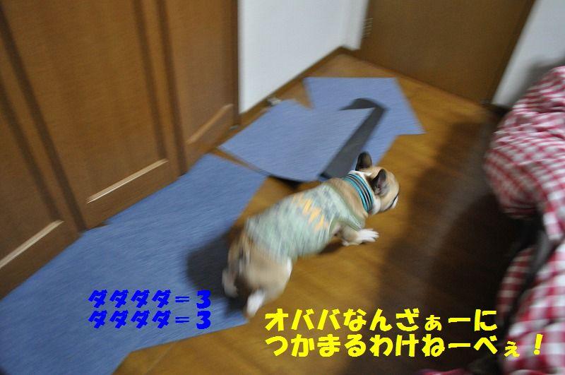 001_20130425125015.jpg
