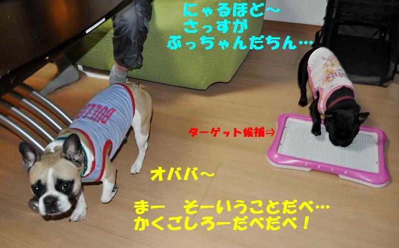 004_20130531144408.jpg