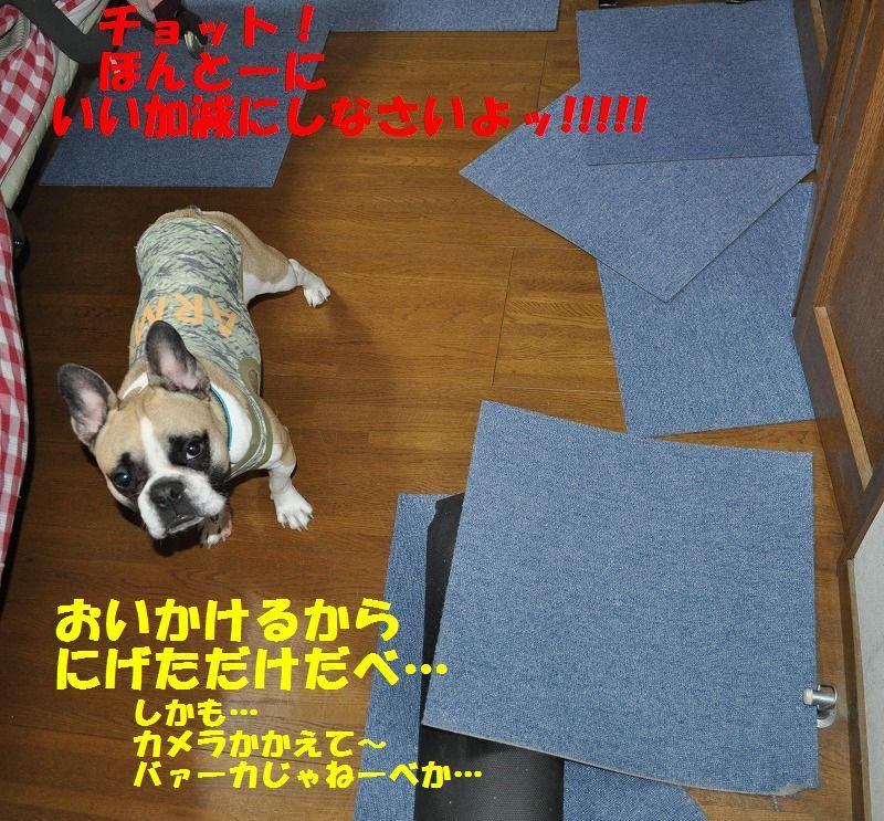 010_20130425125025.jpg