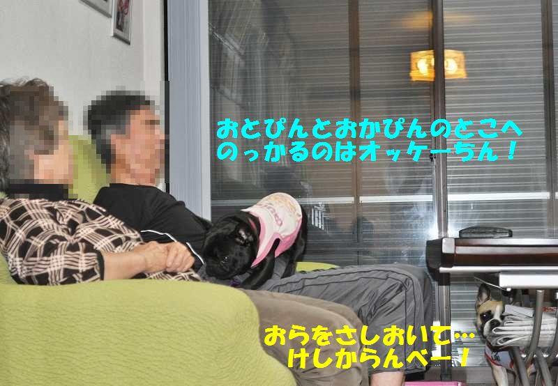 019_20130531144412.jpg