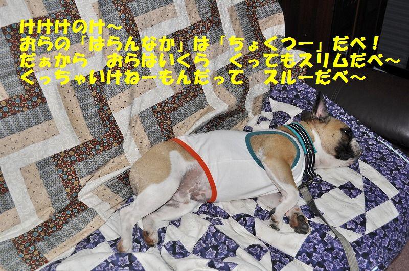 036_20130418095915.jpg