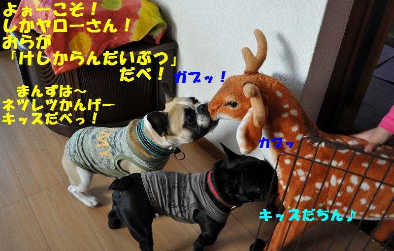 047_20130605143749.jpg