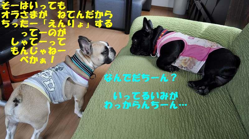 057_20130703154451.jpg
