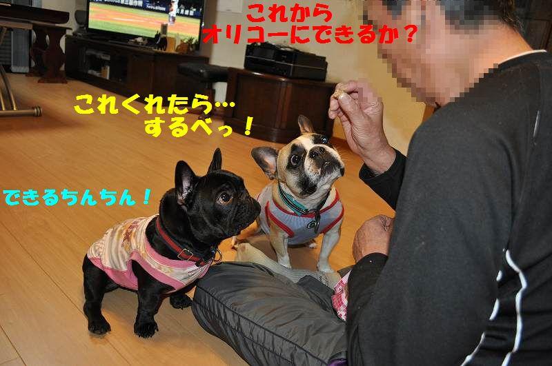 071_20130531144445.jpg