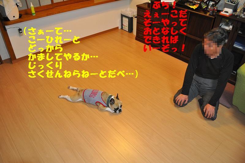 079_20130531144449.jpg