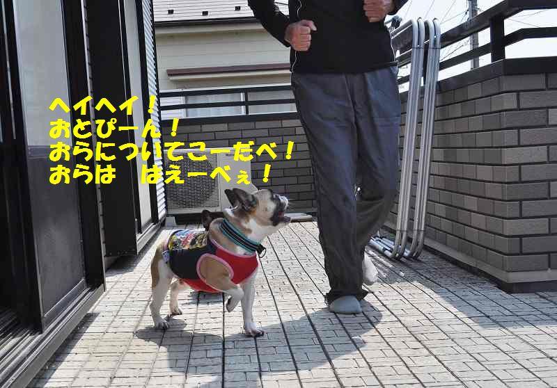 086_20130529100320.jpg