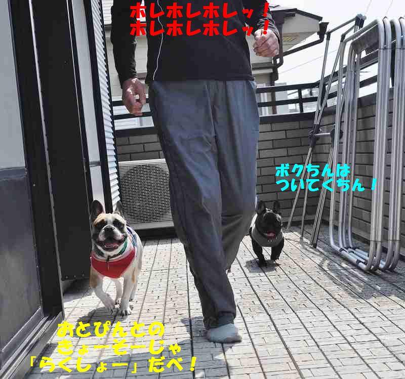 092_20130529100347.jpg