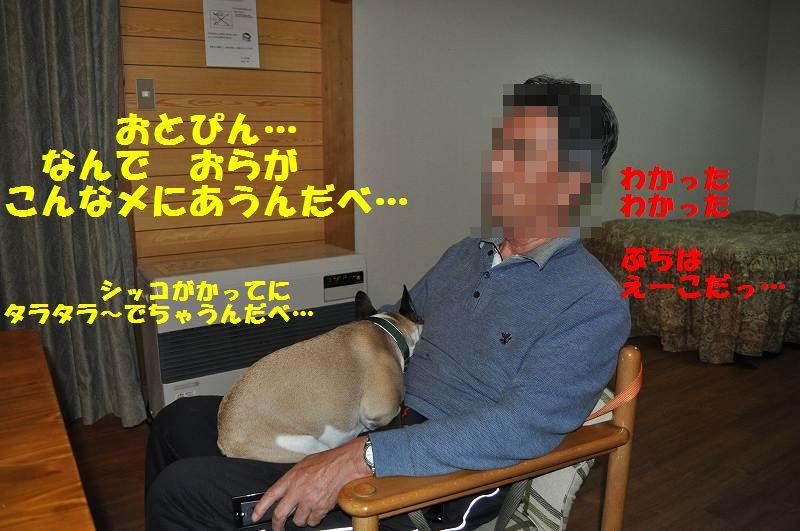 112_20130514154447.jpg