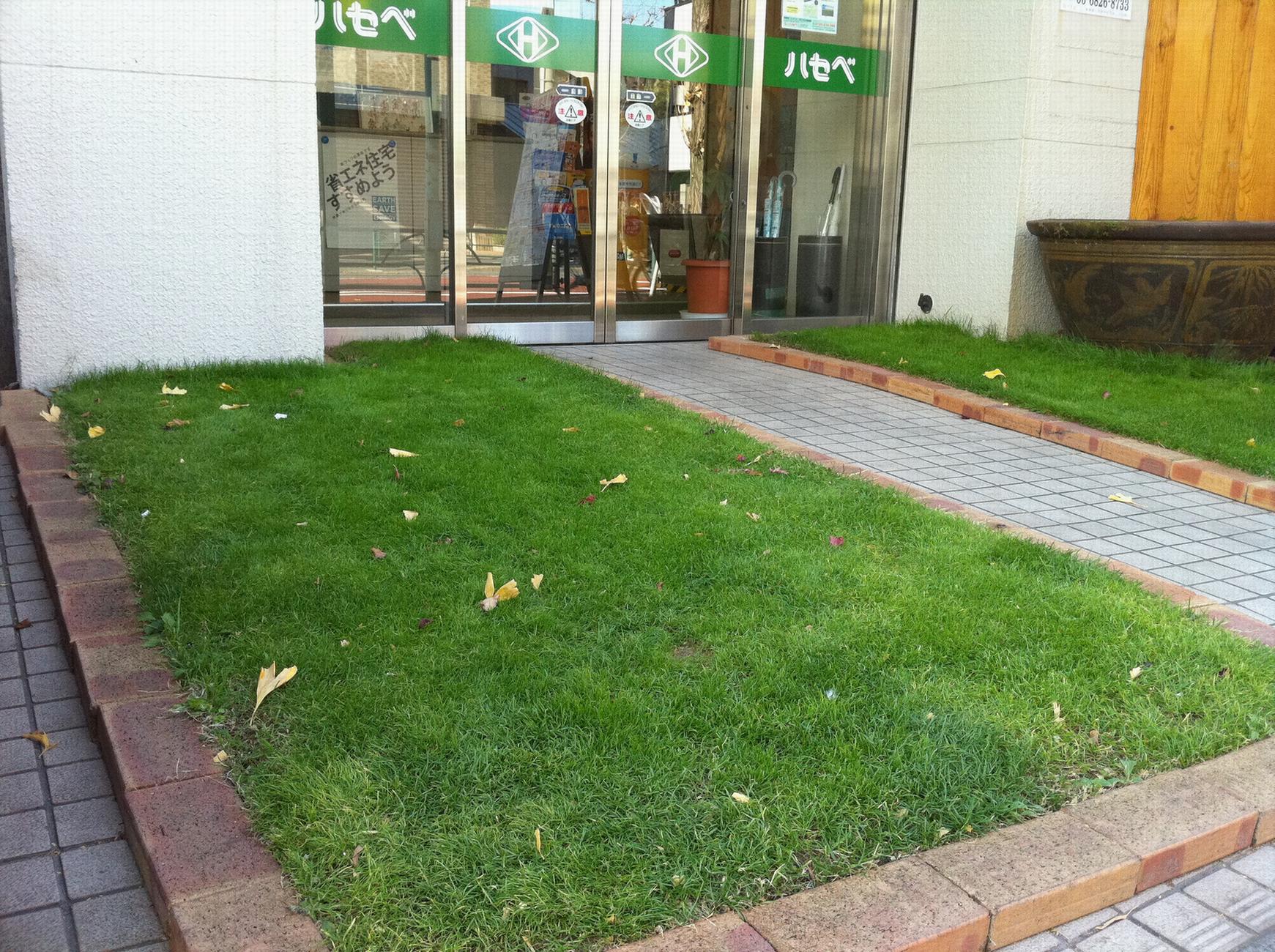別館前の芝生1