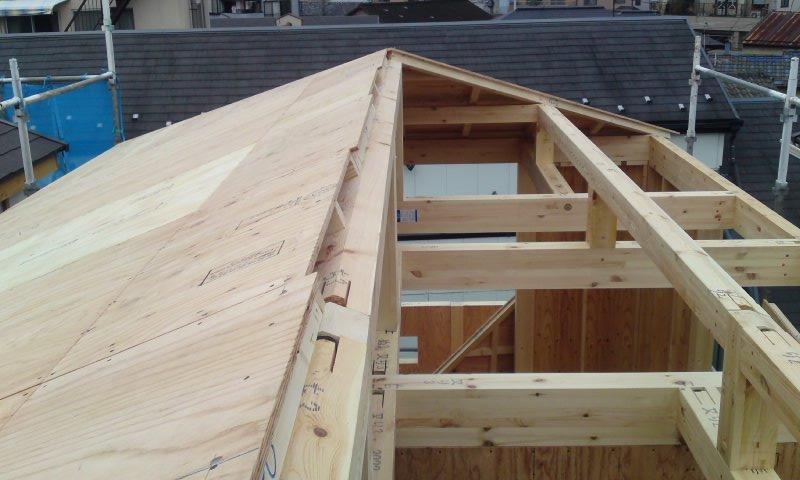 20110108屋根