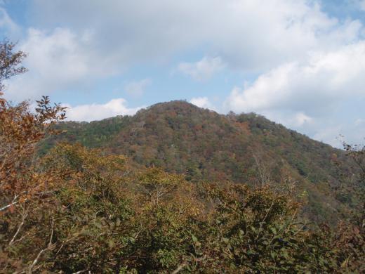 20121021-1131.jpg