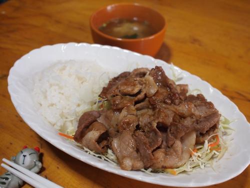 昼食☆メガ盛り豚ごはん