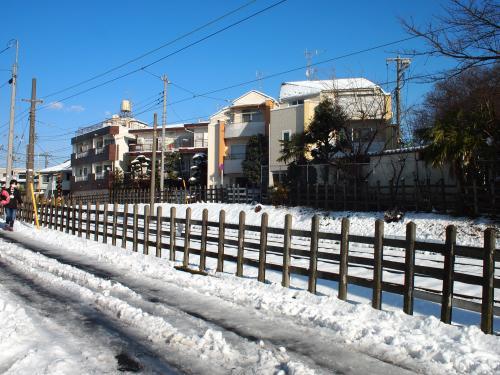 豪徳寺の雪景色