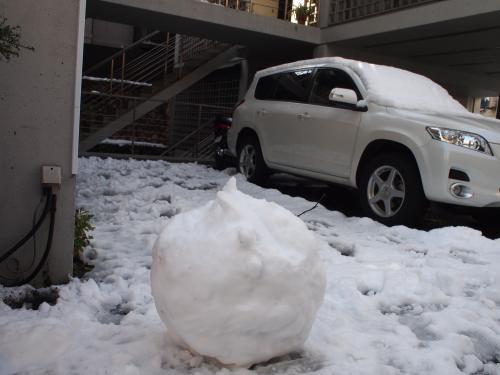 雪の東京☆雪だるま探し