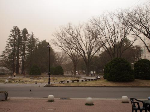 駒沢公園へ行く。