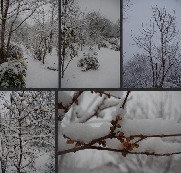 2013-01-14 2013-01-14 003 024-horz-vert