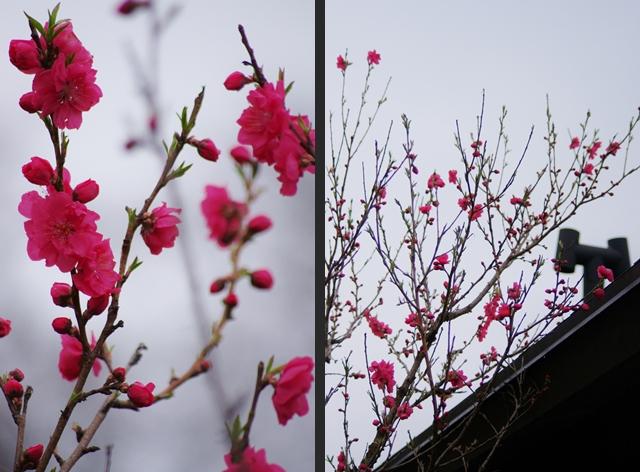 2013-03-31 2013-03-31 001 057-horz