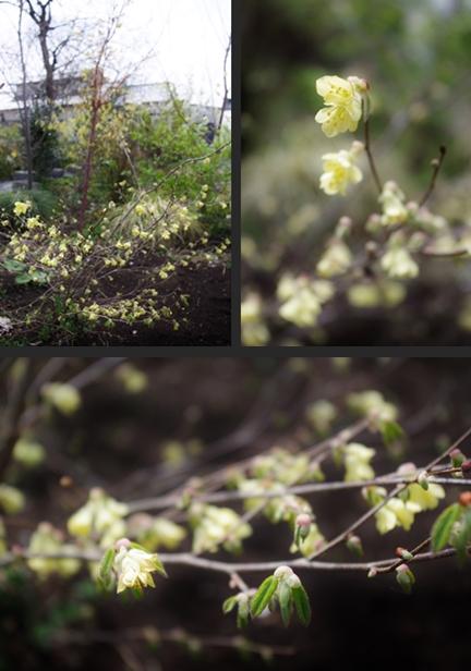 2013-04-05 2013-04-05 002 051-horz-vert