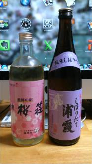 sake250328_04