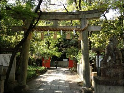 右京250415_05