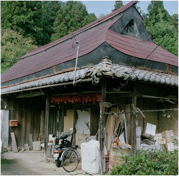 cf80-hassel-2014-11-16-美濃あかり-伊自良柿-fuzi400h-794870007-n_R
