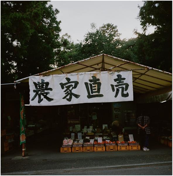 mamiya6-75mm--2014-12-1--静岡-portra400-501420005-n_R