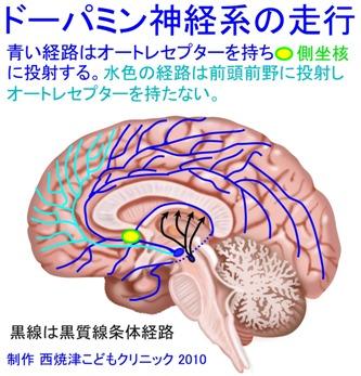 report_04_65_2_20130414104323.jpg