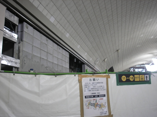 P8050065.jpg
