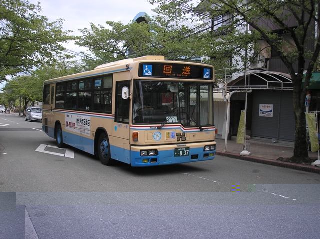 P8050101.jpg