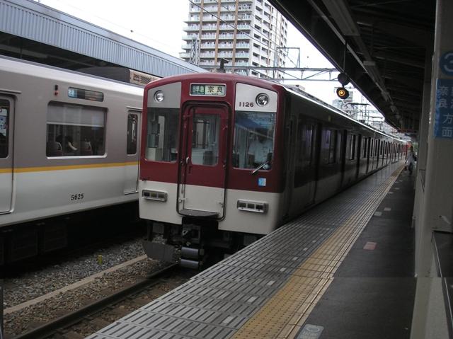 P8050132.jpg