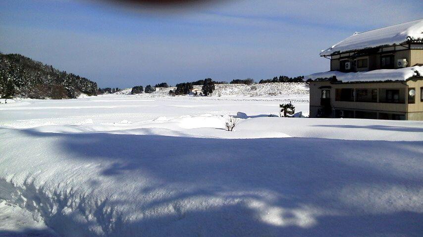 2013年1月12日 雪