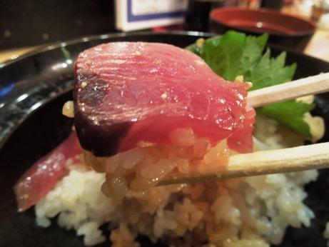 魚万歳10
