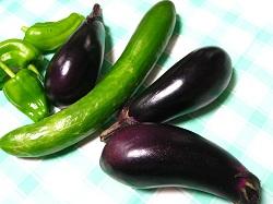20120715野菜1