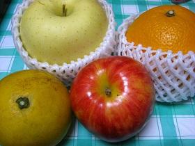20130407果物2